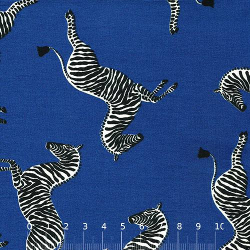 Tricoline Zebra - Azul Royal