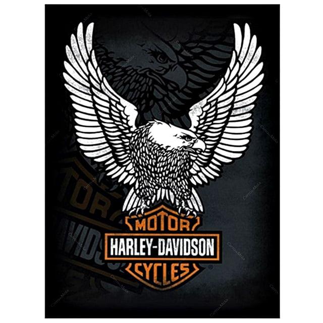 PLACA METAL MOTOR HARLEY - DAVIDSON