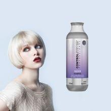Silver Shampoo Control System