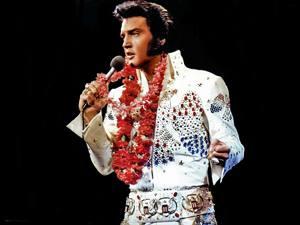 Placas Decorativas Elvis Presley Retro PDV403