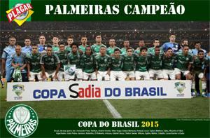 Placa Decorativa Palmeiras 2015 PDV461