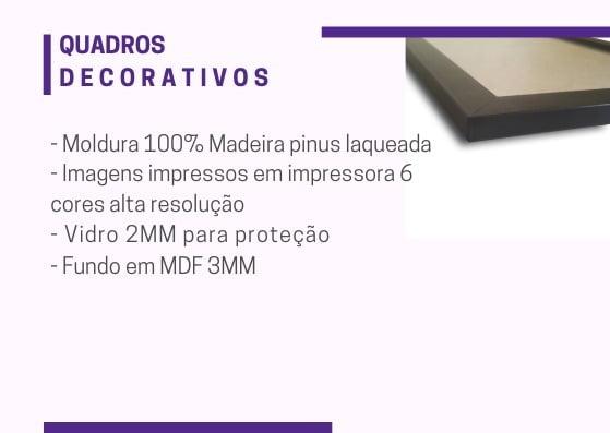 Kit Conjunto 3  Quadros Decorativos Never Give Up 20x30