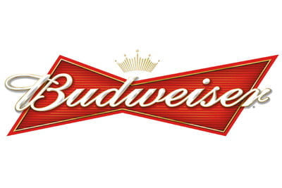 Placa Decorativa Budweiser Cerveja PDV035