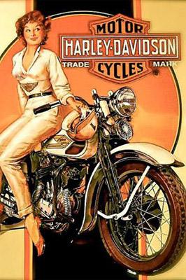 Placa Decorativa Vintage Retro Harley Davidson PDV107