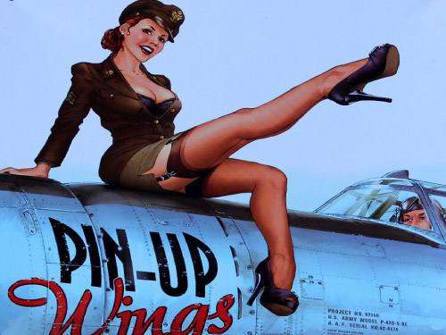 Placa Decorativa Vintage Retro Pin Up Winas Mulher PDV150