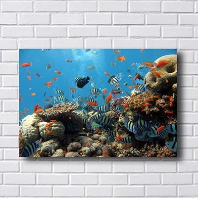 Quadro Decorativo Corais Marinhos