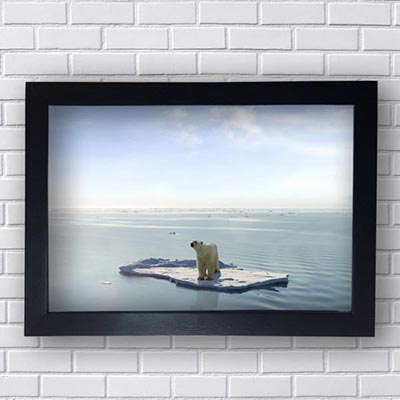 Quadro de Urso polar