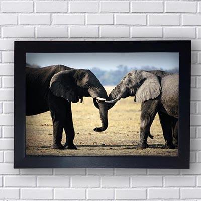Quadro Decorativo de Elefantes