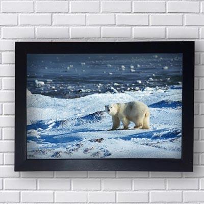 Quadro Decorativo de Urso Polar