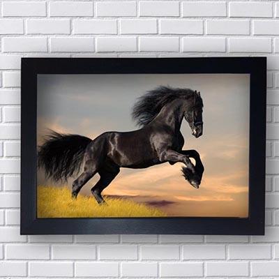 Quadro Decorativo de Cavalo