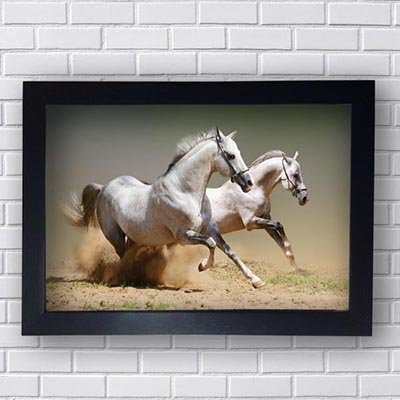Quadro Decorativo de Cavalos