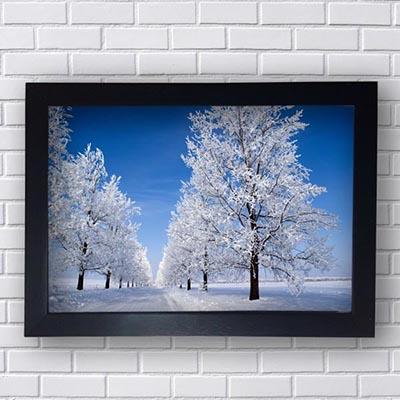Quadro Decorativo Estrada de Neve