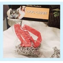 Bem do Gato | Bicho de Rua | Guia para Cães