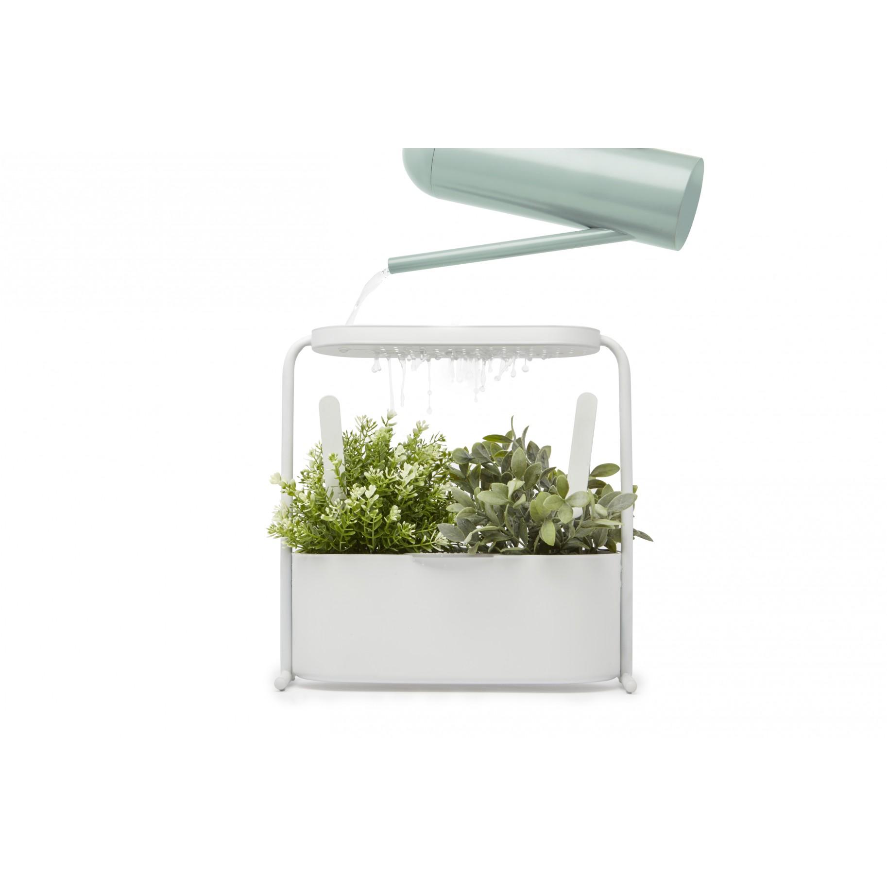 Giardino Vaso Jardineira Para Plantas