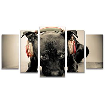 Tela Canvas para Sala, Escritório e Quarto 5 Peças Cão com Fone de Ouvido