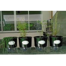 Kit Horta Autoirrigável Raiz - 4 vasos Médios e 10 Etiquetas