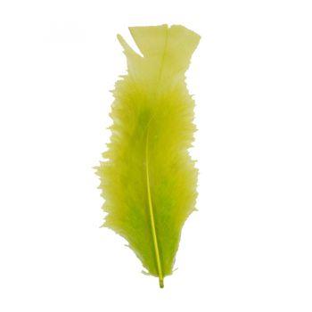 Pena Pequena de Peru Verde Clara- 12 unidades