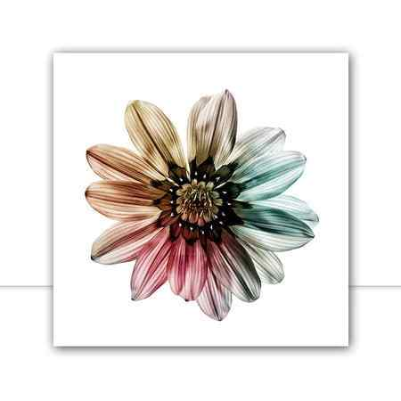 Quadro Multicolor Flower II por Juliana Bogo