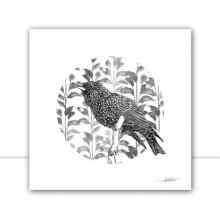 Silk Birds Q I P&B por Joel Santos