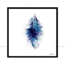 Feather I por Joel Santos