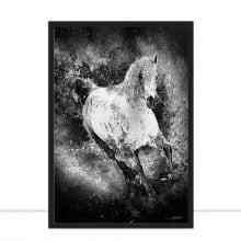 Horses Aquarela III P&B por Joel Santos