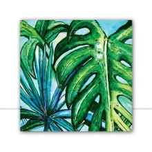 Botanical Aqua 1 Q por Joel Santos