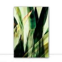 Green Botanical II por Joel Santos