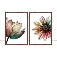 Conjunto de Quadros para Sala Multicolor Flowers por Juliana Bogo