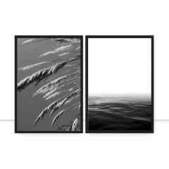 Composição de quadros - Wild Neblina