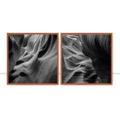 Conjunto de Quadros Antelope I e III P&B por Patricia Schussel Gomes