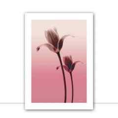 Quadro Flower Layer I por Joel Santos