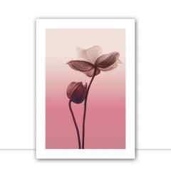 Quadro Flower Layer III por Joel Santos