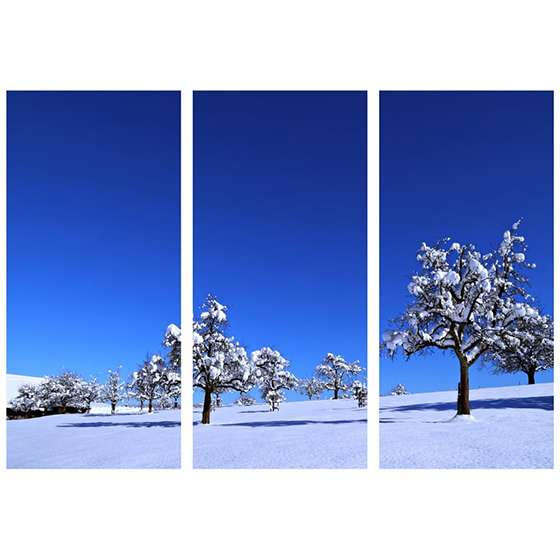 Quadro arvore neve inverno decorativa
