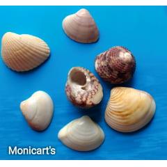 Mini conchas