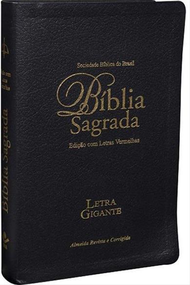BIB.LETRA GIGANTE REVISTA E CORRIGIDA