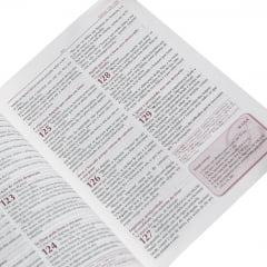 BIBLIA PREGADOR
