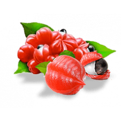 Eliquid de Guaraná