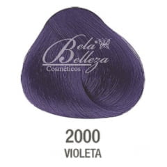 Tinta Evolution Alfaparf 60ml 2000 Violeta