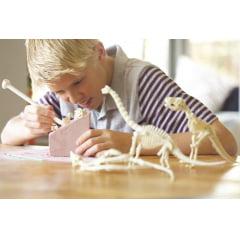 Kit Escavação - Esqueleto de Dinossauro